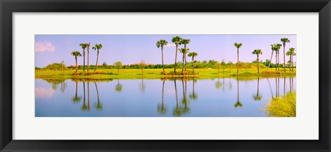Framed Reflection of trees on water, Lake Worth, Palm Beach County, Florida, USA Print