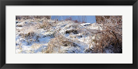 Framed Snow covered hill, Saint-Blaise-sur-Richelieu, Quebec, Canada Print