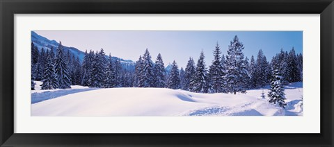 Framed Snowy Field & Trees Oberjoch Germany Print