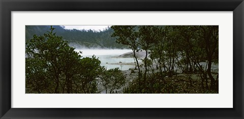 Framed Volcanic lake in a forest, Kawah Putih, West Java, Indonesia Print