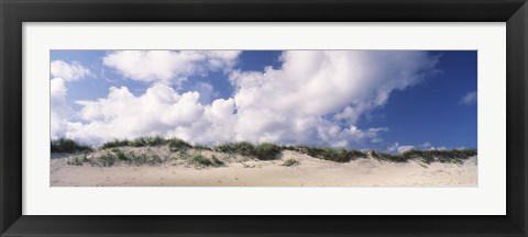 Framed Sand dunes, Cape Hatteras National Seashore, Outer Banks, North Carolina, USA Print