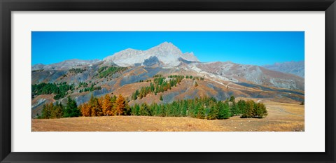 Framed Champs pass in autumn, French Riviera, Provence-Alpes-Cote d'Azur, France Print