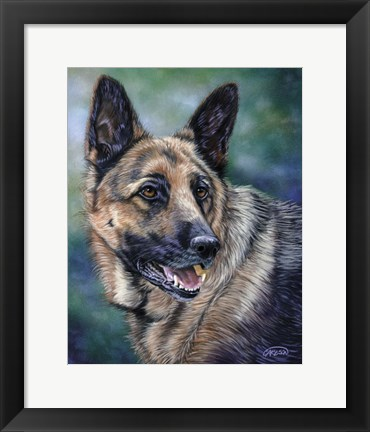 Framed German Shepard Print