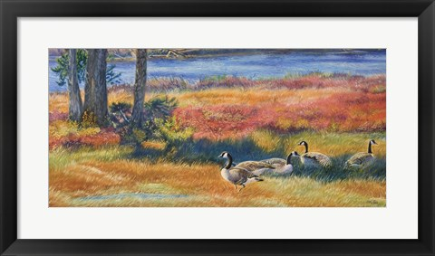Framed Splendor In The Marsh Print