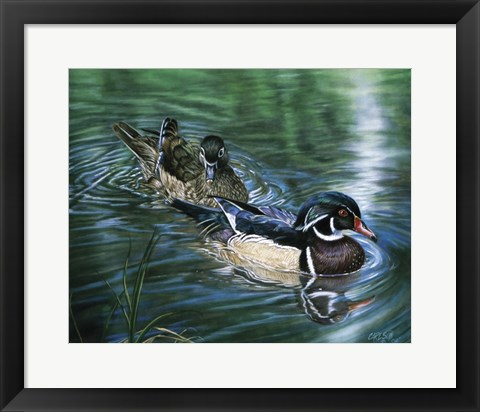 Framed Wood Ducks Print
