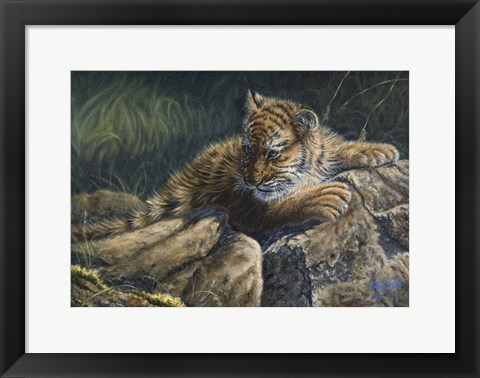 Framed Young Tiger Print