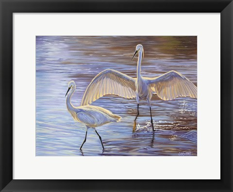Framed Light Dance (Snowy Egrets) Print
