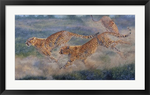 Framed In Pursuit Print