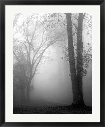 Framed November Fog Print