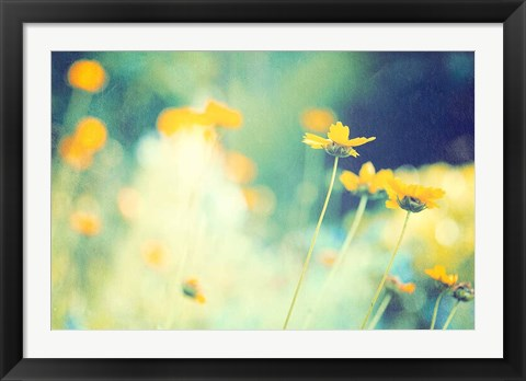Framed In the Meadow Print