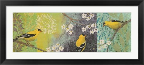 Framed Goldfinches Blooming Print