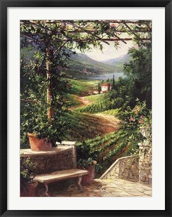 Framed Chianti Vineyard Print