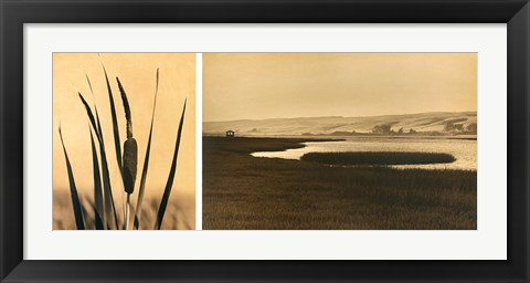 Framed Tomales Bay #2 Print