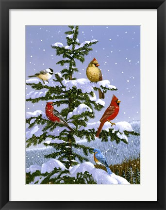 Framed Songbirds On A Limb Print