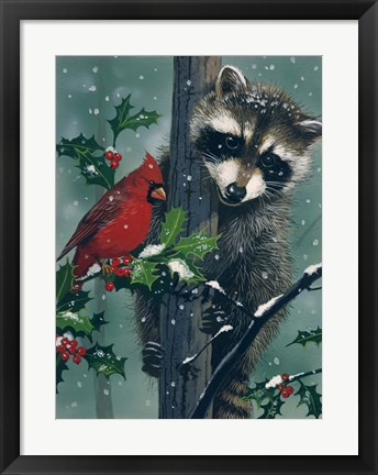 Framed Raccoon - winter Print