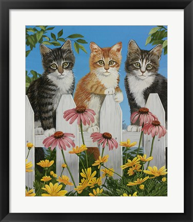 Framed Backyard Kittens Print