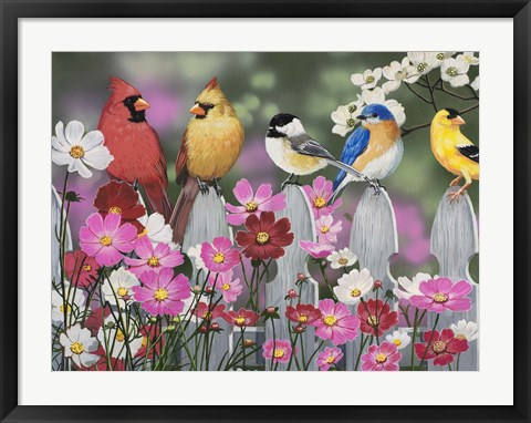 Framed Song Birds and Cosmos Print
