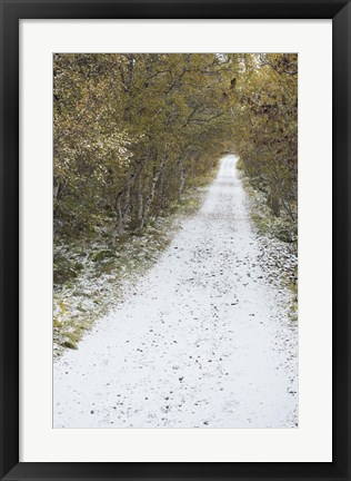 Framed Snow Way 3 Print