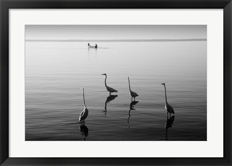 Framed 4 Heron and Boat Print
