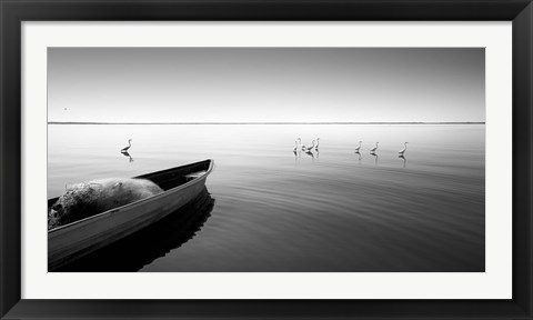 Framed Boat And Herons Print