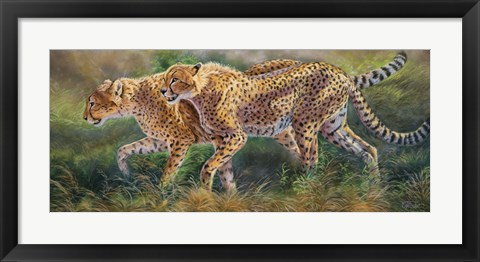 Framed March Of The Cheetahs Print