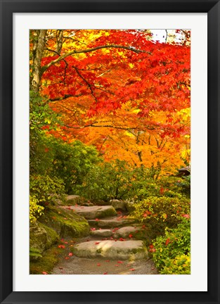 Framed Stone steps in a forest in autumn, Washington State, USA Print