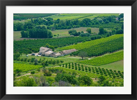 Framed Farmhouse in a field, Lacoste, Vaucluse, Provence-Alpes-Cote d'Azur, France Print