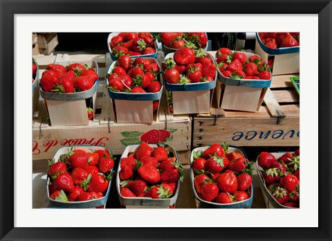Framed Strawberries for sale at weekly market, Arles, Bouches-Du-Rhone, Provence-Alpes-Cote d'Azur, France Print