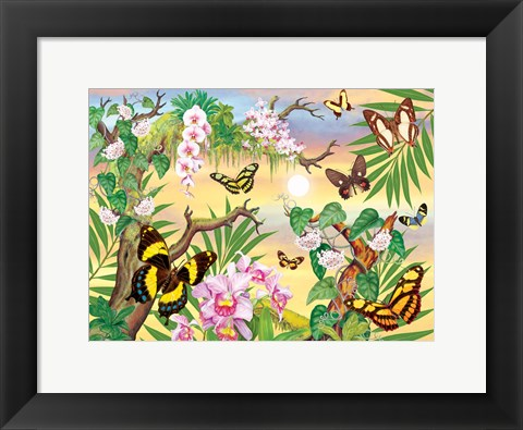 Framed Butterflies Up IN The Canopy Print