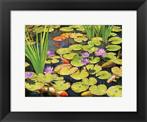Framed Koi Pond II Print