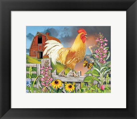 Framed Yellow Rooster Greeting The Day Print