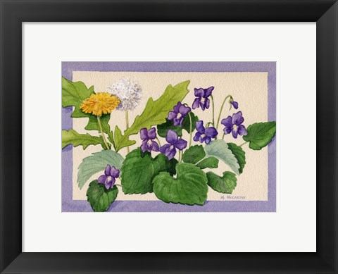 Framed Dandelion And Violets Print