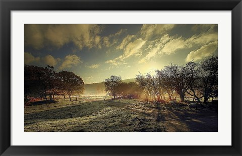 Framed Here Comes the Sun Print