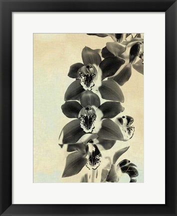 Framed Orchid Blush Panels IV Print