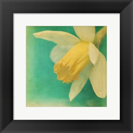 Framed White Flowers V Print