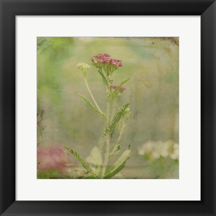 Framed Filtered Dreams VI Print