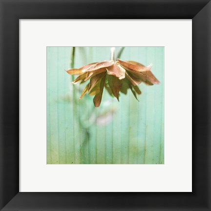 Framed Dream in Pink II Print