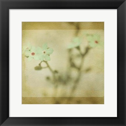Framed Pastel Paths XI Print