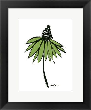 Framed Graphic Cone Flower II Print