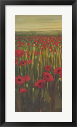 Framed Red Poppies in Field I Print