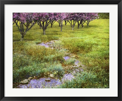 Framed Summer Path Print