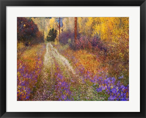 Framed Lost Canyon Larkspurs II Print