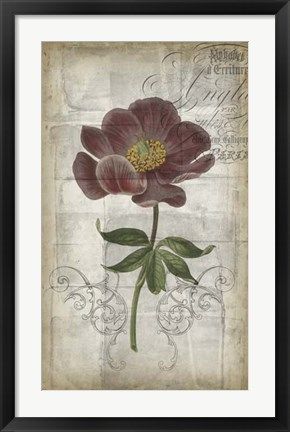 Framed French Floral I Print