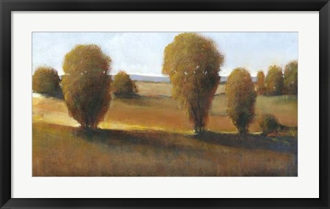 Framed Afternoon Light II Print