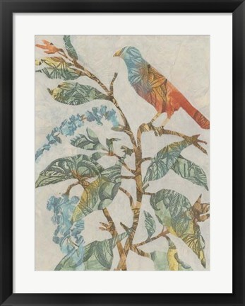 Framed Aviary Collage II Print
