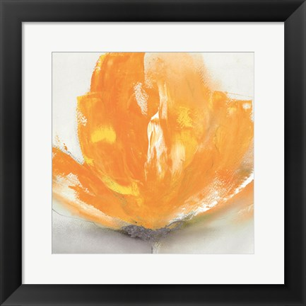 Framed Wild Orange Sherbet II Print