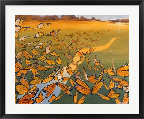 Framed Monarch Migration Print
