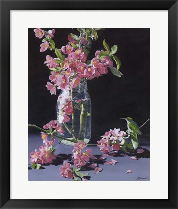 Framed Quince & Ruby II Print