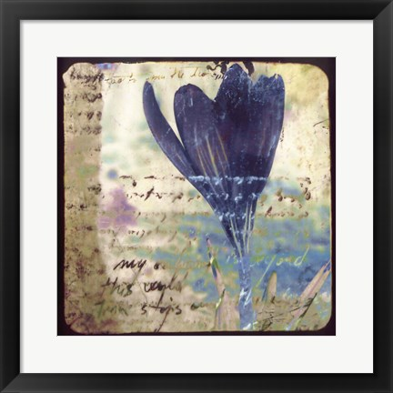 Framed Blooming Purple I Print