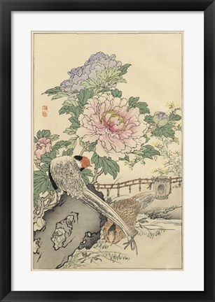 Framed Pheasant and Peony Print